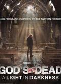上帝未死3 God's Not Dead: A Light in Darkness3戴維·懷特dvd